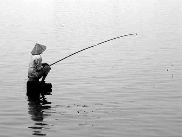 Mơ thấy câu cá đánh con gì